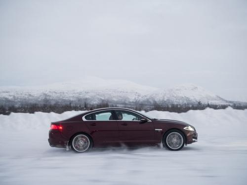 ?????�?�?�???? ???�?�????: ?�?�???�?� ???� ?�?????? ?�?� ?????�?�?? ?????�???????????????????�?� Jaguar